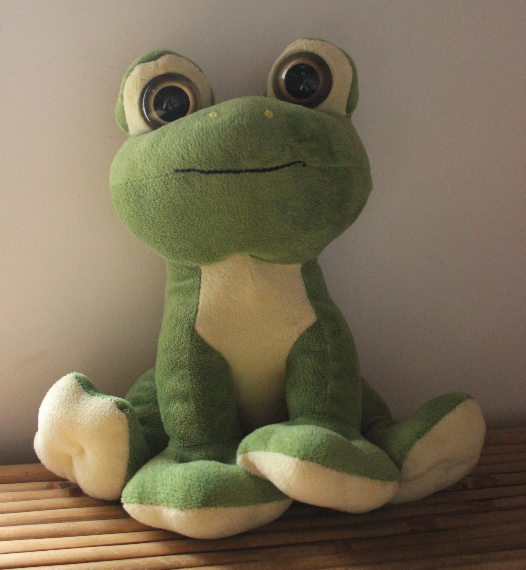 logo-grenouille